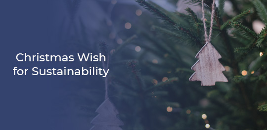 Christmas-Wish-for-Sustainability-540X263